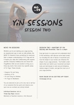 Yin Sessions - Overview